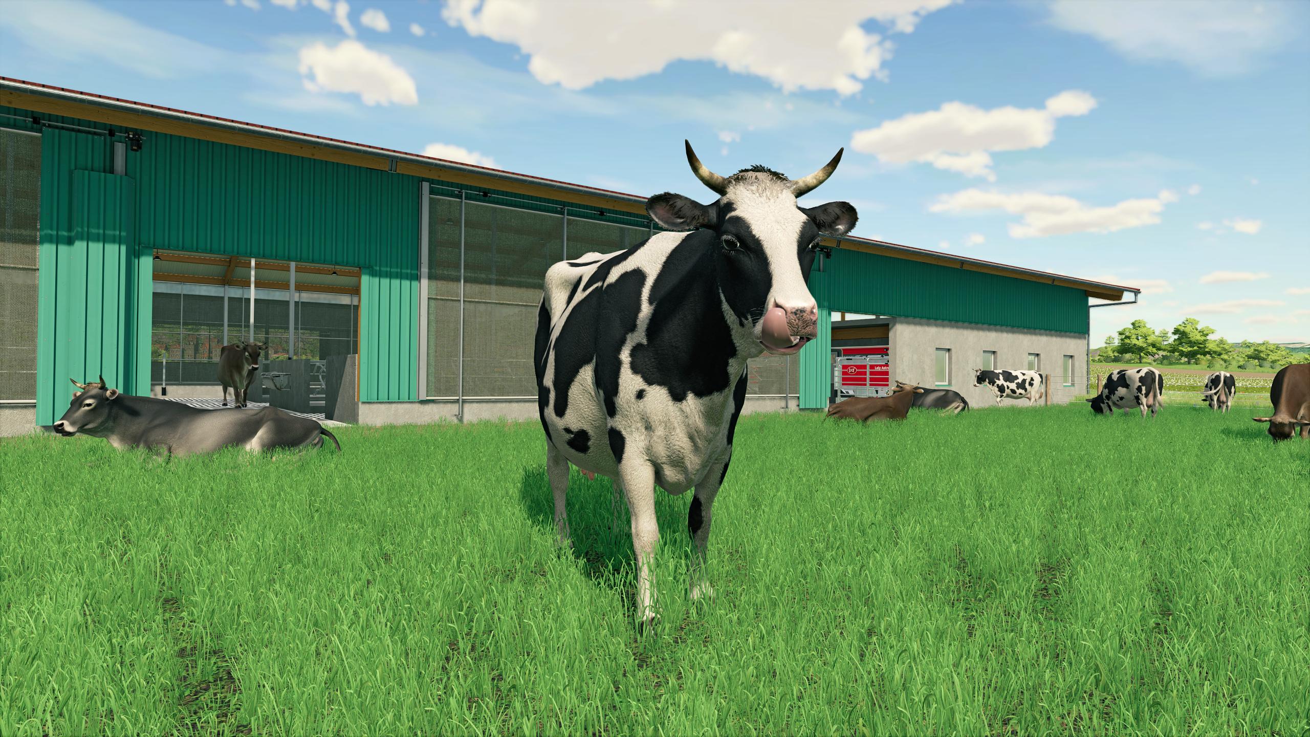 FS22-Cows
